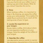 Coffee Card back side - coffee tasting info
