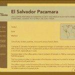 El Salvador Pacamara Coffee Sourcing Info Card
