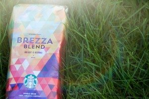 2 - 1 - Brezza Blend - Front on  a patch of grass