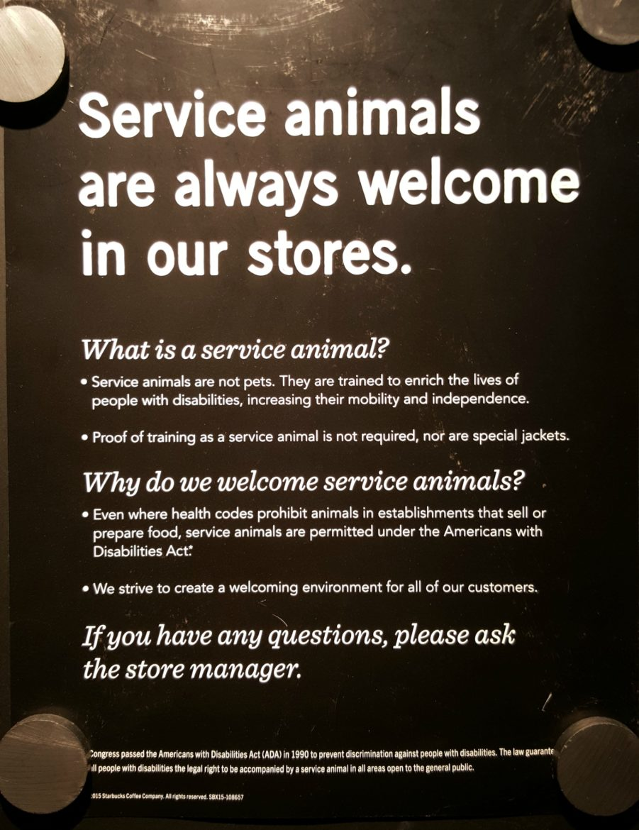 all pets stores pets world