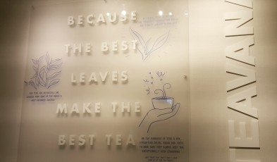 2 - 1 - 20151116_182755[1] the best leaves make the best tea