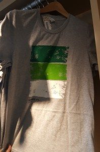 1 - 1 - 20160617_162030 green striped Starbucks t-shirt at the coffee gear store