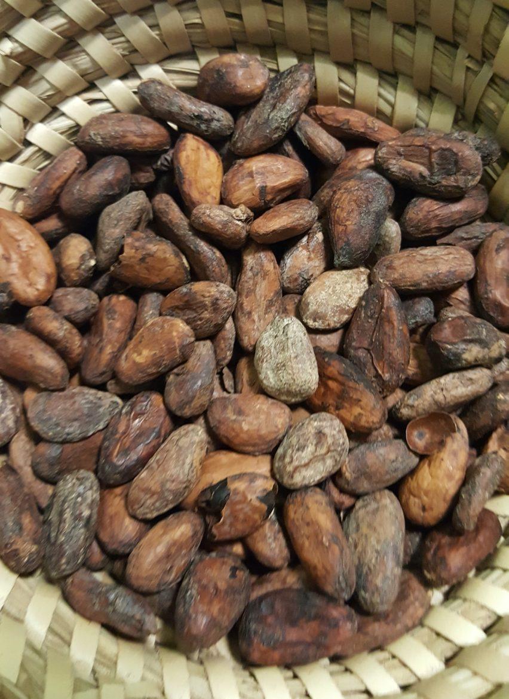 Organic, Fair Trade Dark Chocolate Peanut Butter Cups: I'm looking ...