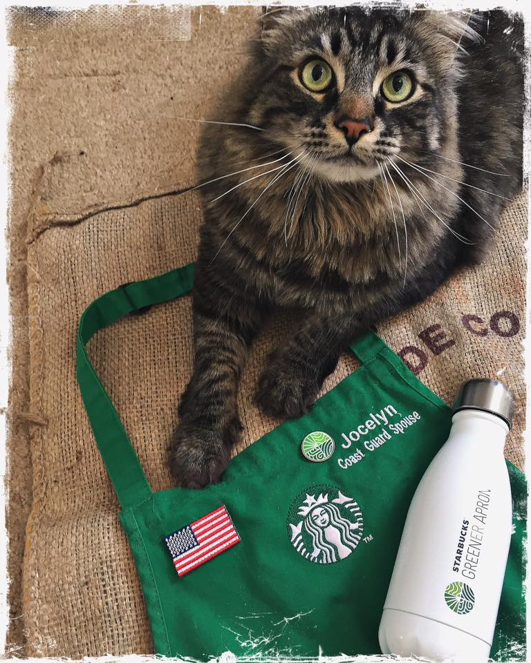 Cosmo and Greener Apron