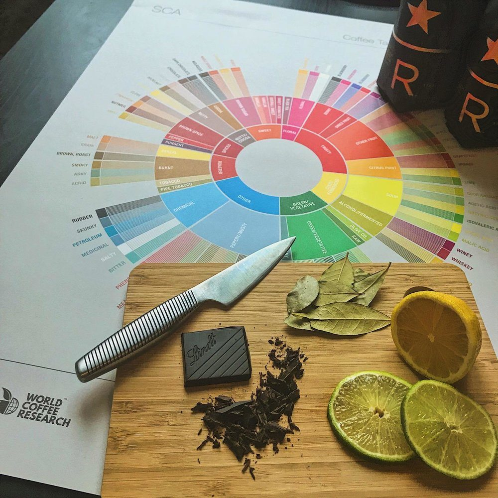 Coffee Education: Sensory Reference Experience Tasting